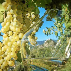 Südtiroler Eisacktaler Wein